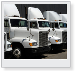 fleet of semi trucks